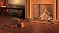 Sleeping_dog_(Dragon_Age_II)
